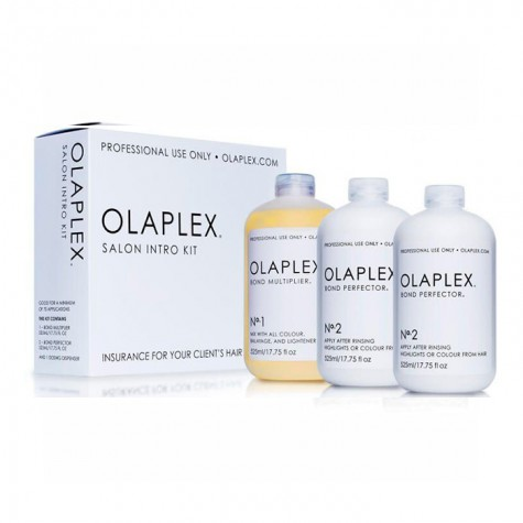 Olaplex Salon Kit Intro