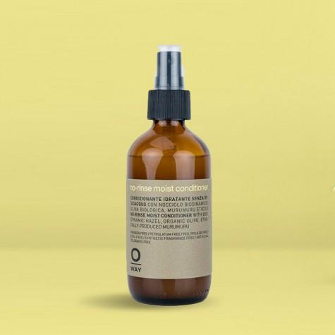No-rinse moist conditioner 160ml
